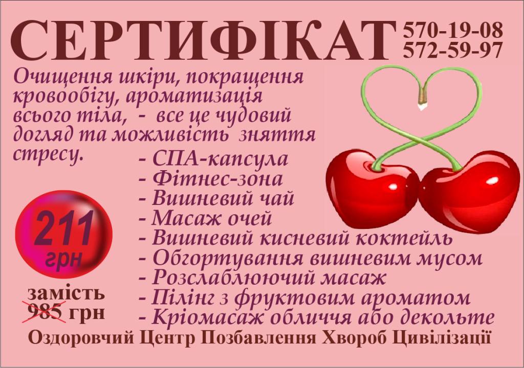 VISHNYA2